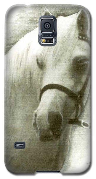 White Welsh Pony Galaxy S5 Case