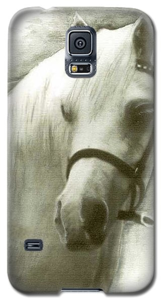 White Welsh Pony Galaxy S5 Case