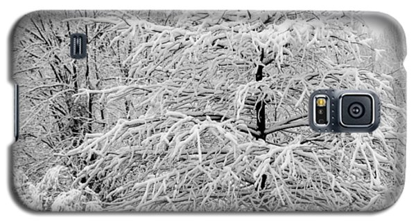 Whiteout In The Wetlands Galaxy S5 Case by John Harding