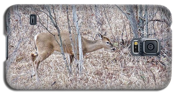 Whitetail Deer 1171 Galaxy S5 Case by Michael Peychich