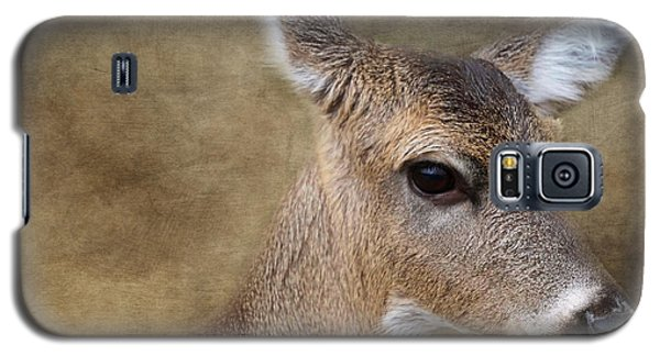 Whitetail Doe Portrait Galaxy S5 Case