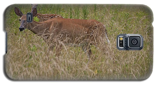 Galaxy S5 Case featuring the photograph Whitetail With Fawn 20120707_09a by Tina Hopkins