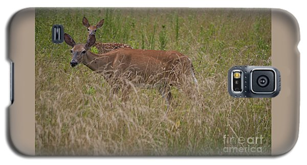 Whitetail With Fawn 20120707_09a Galaxy S5 Case