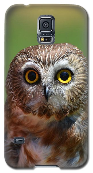 Who Me Galaxy S5 Case
