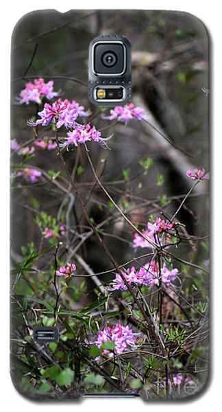 Galaxy S5 Case featuring the photograph Who Put The Wild In Wildflowers by Skip Willits