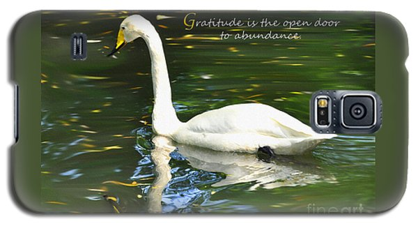 Whooper Swan Gratitude Galaxy S5 Case by Diane E Berry