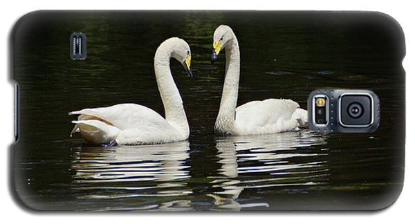 Galaxy S5 Case featuring the photograph Whooper Swans by Sandy Keeton