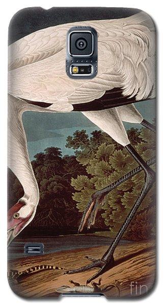 Audubon Galaxy S5 Case - Whooping Crane by John James Audubon