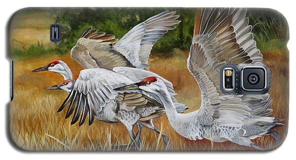 Sandhill Cranes In A Field Galaxy S5 Case