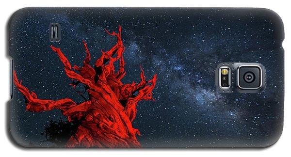 Wicked Galaxy S5 Case