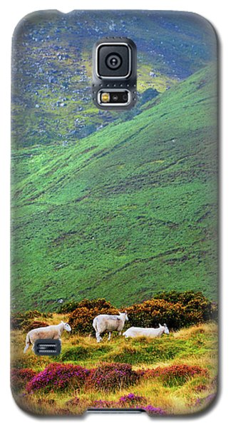 Galaxy S5 Case featuring the photograph Wicklow Pastoral by Jenny Rainbow