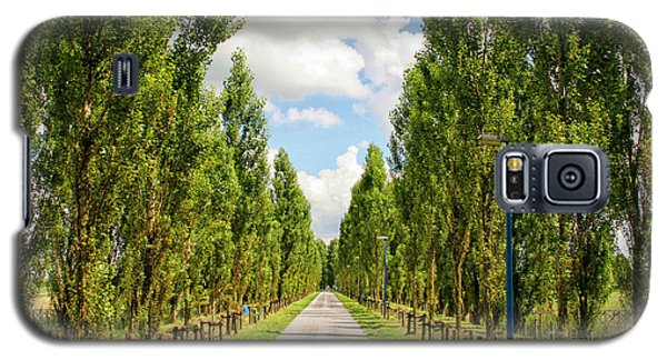 Wide Road With Trees Galaxy S5 Case by Patricia Hofmeester