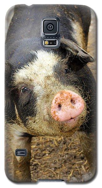 Wilbur Galaxy S5 Case