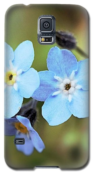 wild and Beautiful 4 Galaxy S5 Case