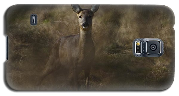 Galaxy S5 Case featuring the photograph Wild And Free by Gary Bridger