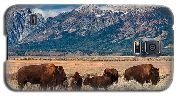 Wild Bison On The Open Range Galaxy S5 Case