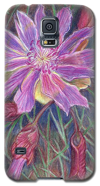 Galaxy S5 Case featuring the drawing Wild Bitterroot Flower by Dawn Senior-Trask
