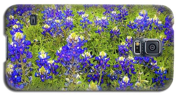 Wild Bluebonnets Blooming Galaxy S5 Case