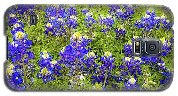 Wild Bluebonnets Blooming Galaxy S5 Case