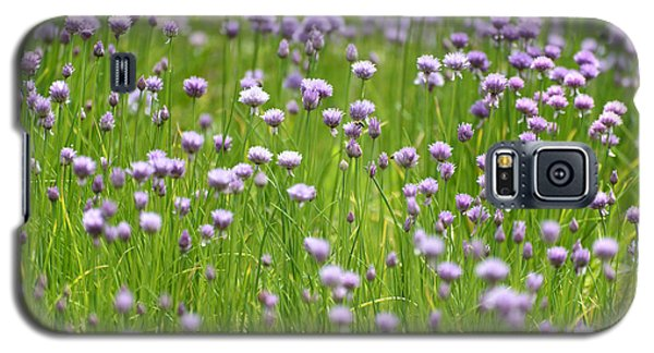 Galaxy S5 Case featuring the photograph Wild Chives by Chevy Fleet