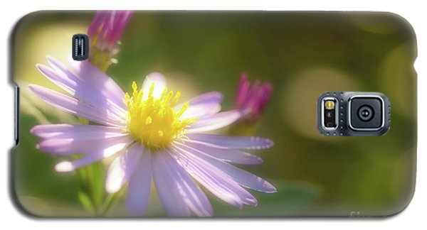 Wild Chrysanthemum Galaxy S5 Case