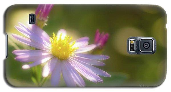 Wild Chrysanthemum Galaxy S5 Case