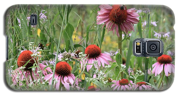 Wild Coneflowers Galaxy S5 Case