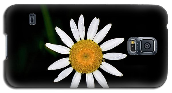 Galaxy S5 Case featuring the digital art Wild Daisy by Chris Flees