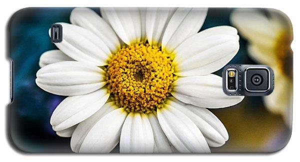 Wild Daisy Galaxy S5 Case