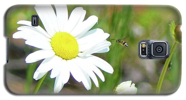 Wild Daisy With Visitor Galaxy S5 Case