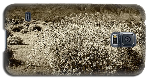 Galaxy S5 Case featuring the photograph Wild Desert Flowers Blooming In Sepia Tone  by Randall Nyhof