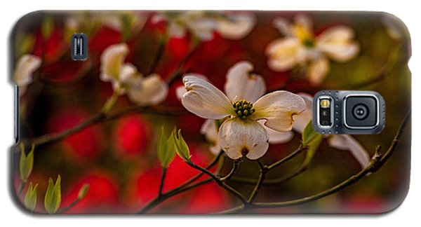 Wild Dogwood And Red Azaleas Galaxy S5 Case