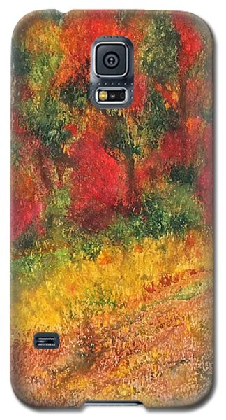Wild Fire Galaxy S5 Case