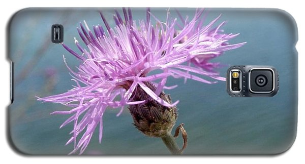 Galaxy S5 Case featuring the photograph Wild Flower By The Lake by Martha Ayotte
