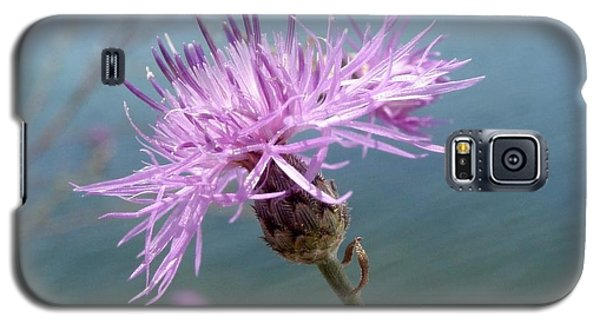 Wild Flower By The Lake Galaxy S5 Case