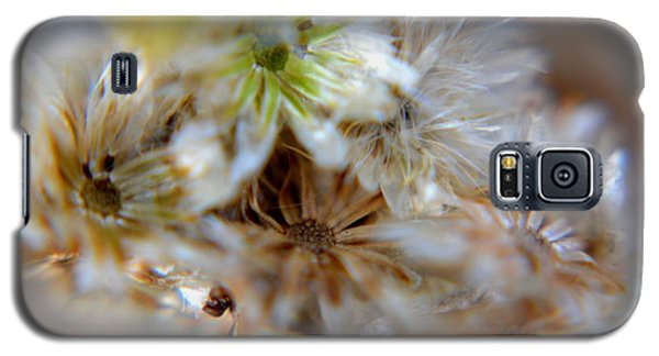Galaxy S5 Case featuring the photograph Wild Flower by Janice Spivey