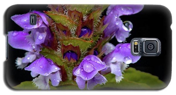 Wild Flower Portrait Galaxy S5 Case