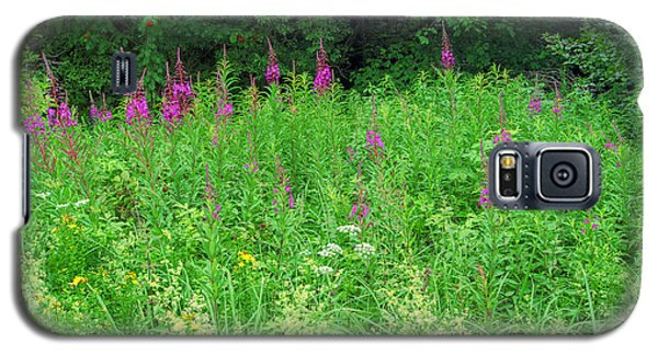 Wild Flowers And Shrubs In Vogelsberg Galaxy S5 Case