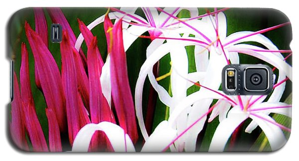 Wild Flowers In Hawaii Galaxy S5 Case
