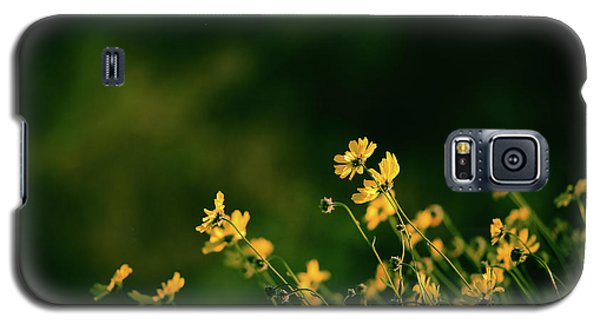 Galaxy S5 Case featuring the photograph Evening Wild Flowers by Kelly Wade