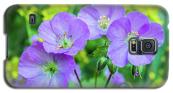 Wild Geranium Family Portrait Galaxy S5 Case