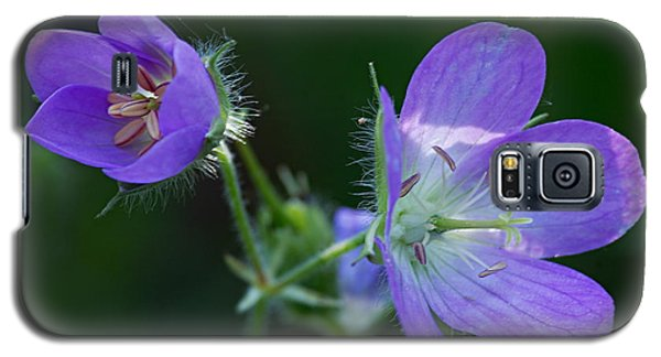 Wild Geraniums Galaxy S5 Case