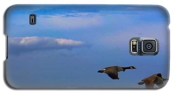 Wild Goose Chase Galaxy S5 Case