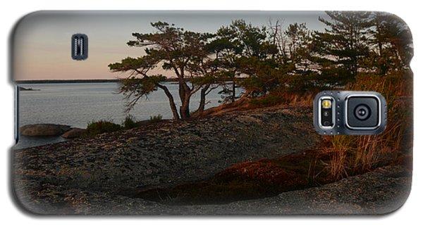 Wild Grass At Sunset - Georgian Bay Galaxy S5 Case