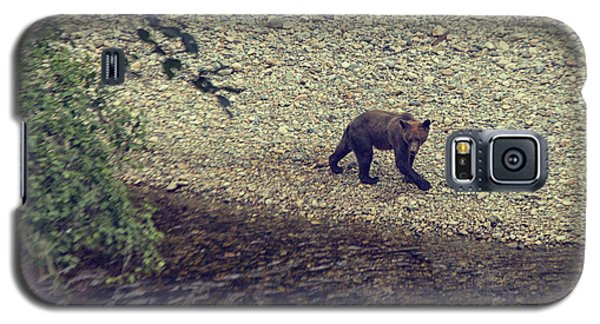 Wild Grizzly Bear Galaxy S5 Case by Patricia Hofmeester