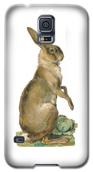 Wild Hare Galaxy S5 Case