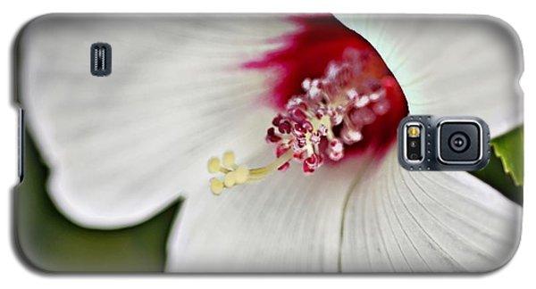 Wild Hibiscus Moscheutos_2a Galaxy S5 Case