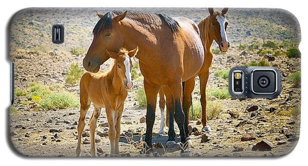 Wild Horse Family Galaxy S5 Case
