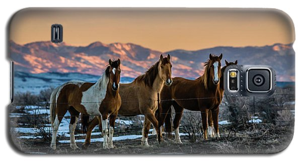 Wild Horse Group Galaxy S5 Case