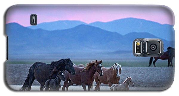 Wild Horse Sunrise Galaxy S5 Case